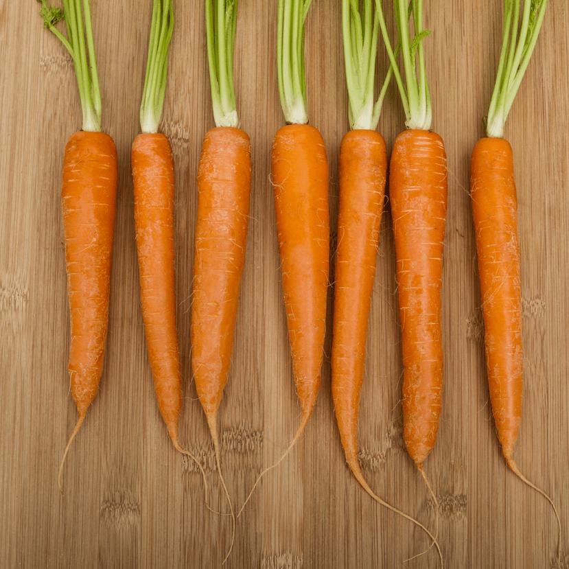 La carotte, ça nous botte !