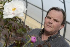 Alain Tricot, l'un des meilleurs spécialistes de la pivoine en france.