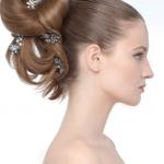 coiffure de fêtes, montés en épingles
